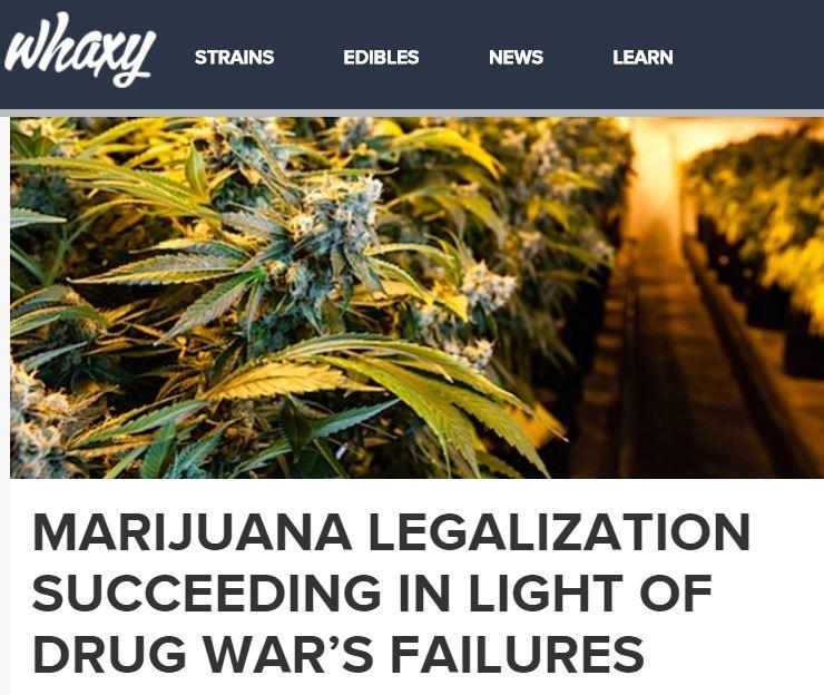 drug_war